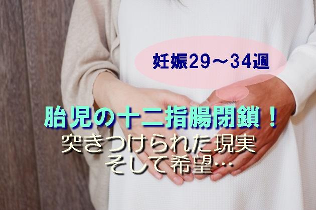 妊婦のお腹に手を当てた男女の写真